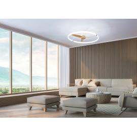 Plafonnier ventilateur led noir Tibet Mantra Diam 65 70w 3900 lumens de 2700k a 5000k livre avec télécommande, compatible googl